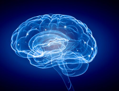 Co neuronauka mówi o zmianie? Neuroplastyczność